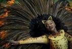 巴西圣保罗狂欢节拉开帷幕 桑巴舞演员盛装表演