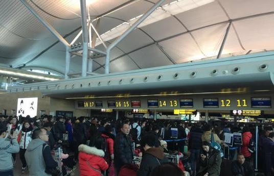 重庆遇罕见雨雪天气 377架次航班取消
