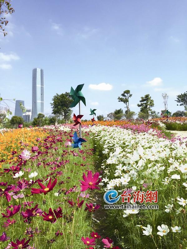 """包括灯塔公园,忠仑公园,万石植物园,仙岳山公园等都将打造专属""""花海""""."""