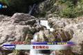 《新闻启示录》冬日梅花山
