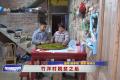 《新闻启示录》竹洋村脱贫之后