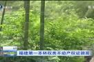 福建第一本林权类不动产权证颁发