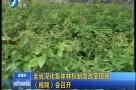 全省深化集体林权制度改革现场(视频)会召开