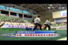 永春:海峡两岸传统武术大赛举行