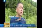 将乐:盘活林产资源 助力林农发展