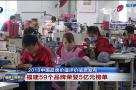 2018中国品牌价值评价信息发布  福建59个品牌荣登5亿元榜单