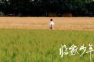 提名作品:临家少年