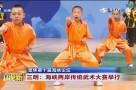 聚焦第十届海峡论坛 三明:海峡两岸传统武术大赛举行