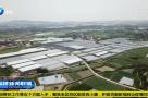 福建:政协委员彰显担当作为 推动复工复产