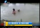 主人假装落水 忠犬跳水相救