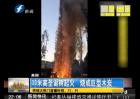 30米高圣诞树烧成巨型木炭