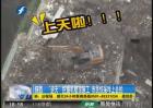 """""""逆天""""挖掘机楼顶施工 市民惊呆咋上去的"""