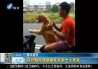 印尼狗狗驾驶摩托车带主人兜风