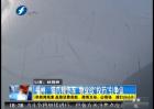 """福州:猫爪频伤车 物业欲""""投药""""引争议"""