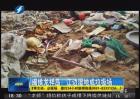 龙祥岛湿地成垃圾场 记者采访遇阻挠