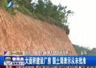 南安一橡塑厂被曝大肆毁林占地