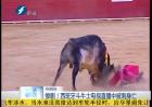 西班牙斗牛士直播中被刺身亡