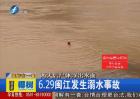 22岁学生闽江溺水身亡引纠纷