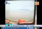 表白被拒跳进钱塘江 民警下水救援