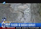 闽江旁的污染塑料破碎厂