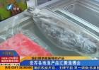 中国国际渔博会今天开展