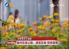 福州花海公园:浪漫花海 悠闲度假