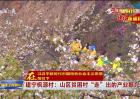 """建宁枫源村:山区贫困村""""走""""出的产业振兴路"""