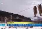 雪天路滑 日本猕猴电线上