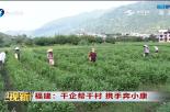 福建:千企帮千村 携手奔小康