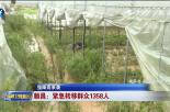 顺昌:紧急转移群众1358人