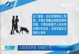 文明规范养狗  你做到了吗?