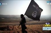为什么ISIS极端组织向欧洲等地转移