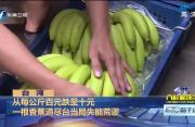 香蕉价跌到谷底  前民代自掏腰包买1吨送蔡英文吃
