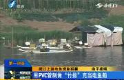 南平:闽江上游的猖獗电鱼现象