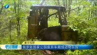 俄罗斯国家公园废弃车厢成动物乐园