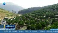 福建:采取措施应对持续干旱