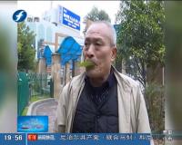"""江西赣州:六旬老人很会""""吹""""  树叶能奏百首歌"""