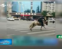 男子模仿视频  骑马上街摔惨