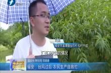 福安:台风过后 农民生产自救忙