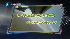 20180210 苏-25战机遭防空导弹击落