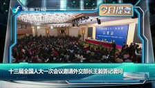 20180308 十三届全国人大一次会议邀请外交部长王毅答记者问