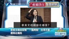 """20190313 蔡英文提出反制""""一國兩制""""臺灣方案 遭輿論痛批"""