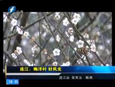 福建农村新闻联播2017-2-20