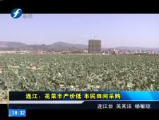 福建农村新闻联播 2017-2-18
