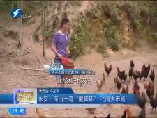 福建农村新闻联播2017-6-20