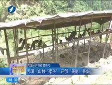 福建农村新闻联播2017-7-22