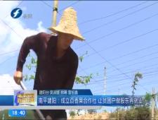福建农村新闻联播2017-7-26