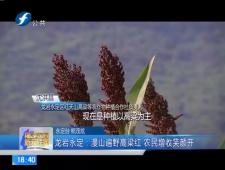 福建农村新闻联播2017-8-13