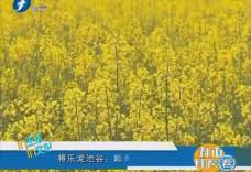 福建将乐龙池谷:踏青赏花的好地方