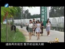 《时代先锋》跨村联带富凤阳